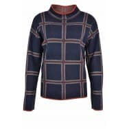 Sweater check ruit - Blauw dessin